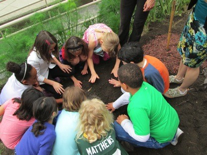 Students planting a three sisters garden at their school in Brookline.
