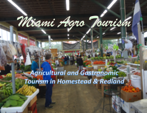 Screen Shot 2014-12-11 at 9.34.23 PM