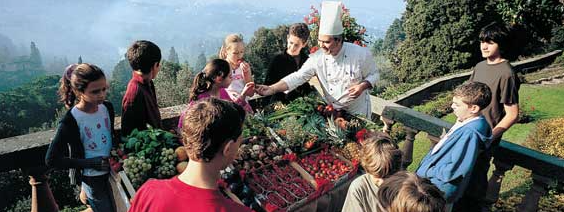 Course Profile: Cultural Tourism